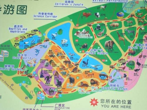 第八次游广州动物园——最仔细的一次