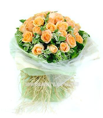 今天给你讲一个玫瑰花的故事:   路边开满了带刺的玫瑰花,三个行者