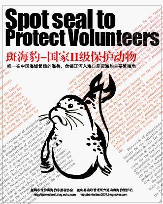 儿童画海豹; 斑海豹宣传画