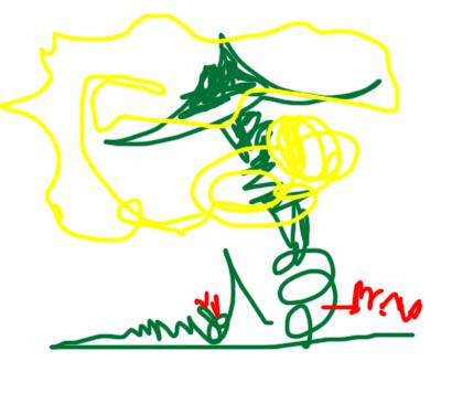 儿童画--2008元宵节-zhrmghg-我的搜狐